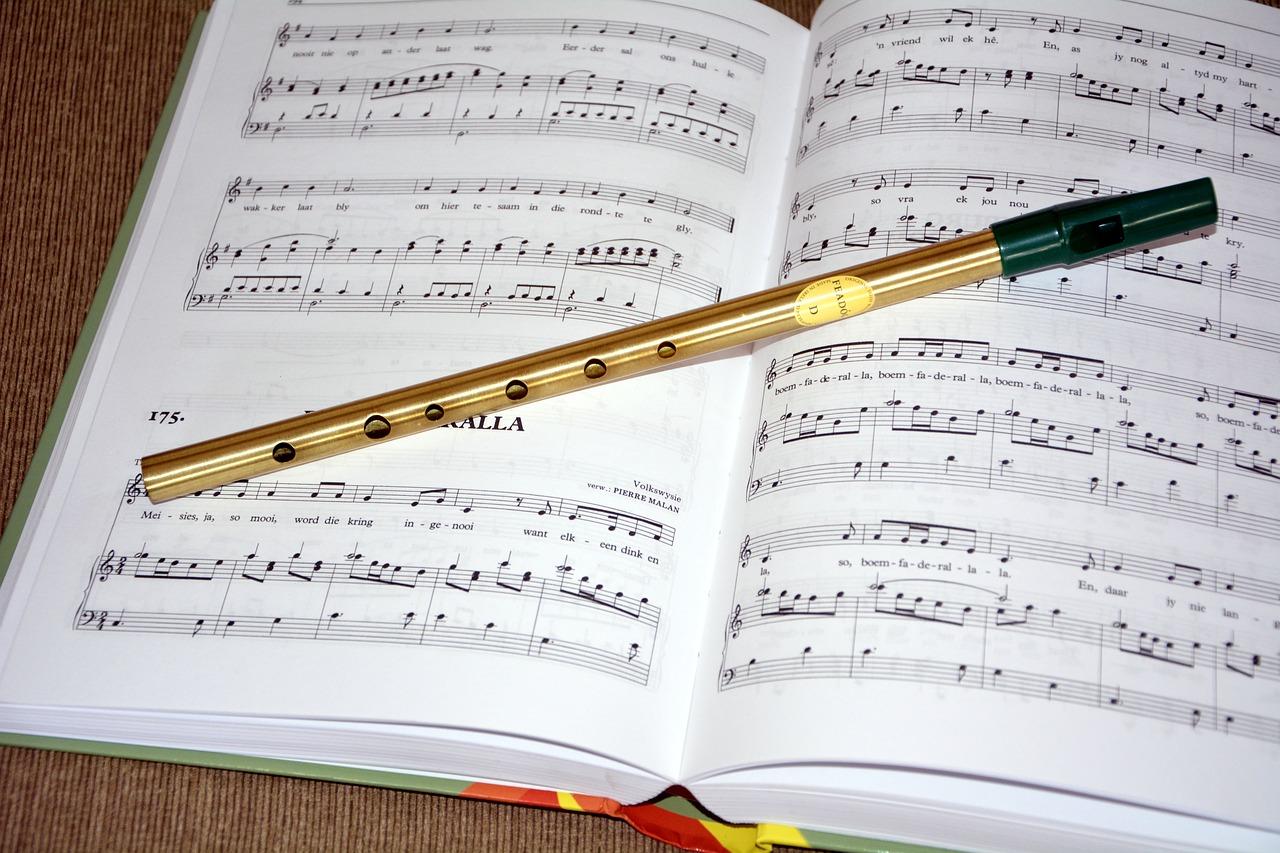 Flash « culture ! » : Les instruments de musique irlandais